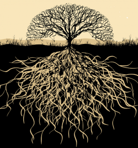 Tree-and-roots2
